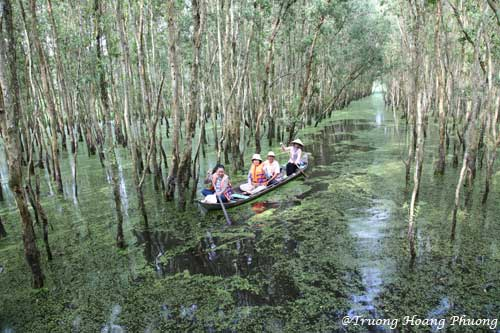 Une ébauche sur le paysage du Vietnam
