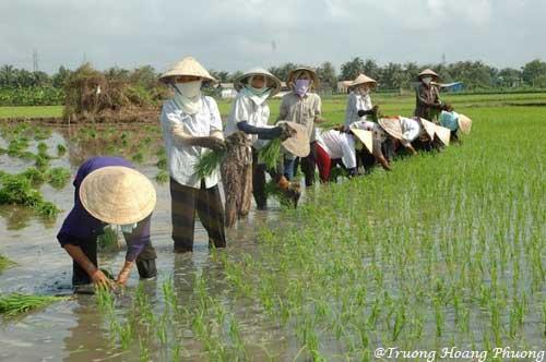 Tout apprendre sur le Vietnam grâce à ce voyage authentique en son genre