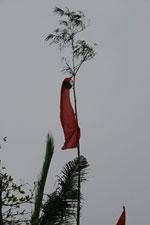 Cây nêu : une perche de bambou allongée munie d'une touffe de feuilles et de divers objets